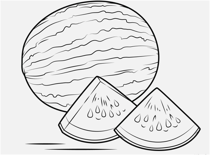 827x609 Coloring Page Watermelon Pics Watermelon Coloring Page