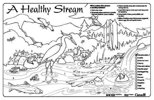 Watershed Coloring Pages