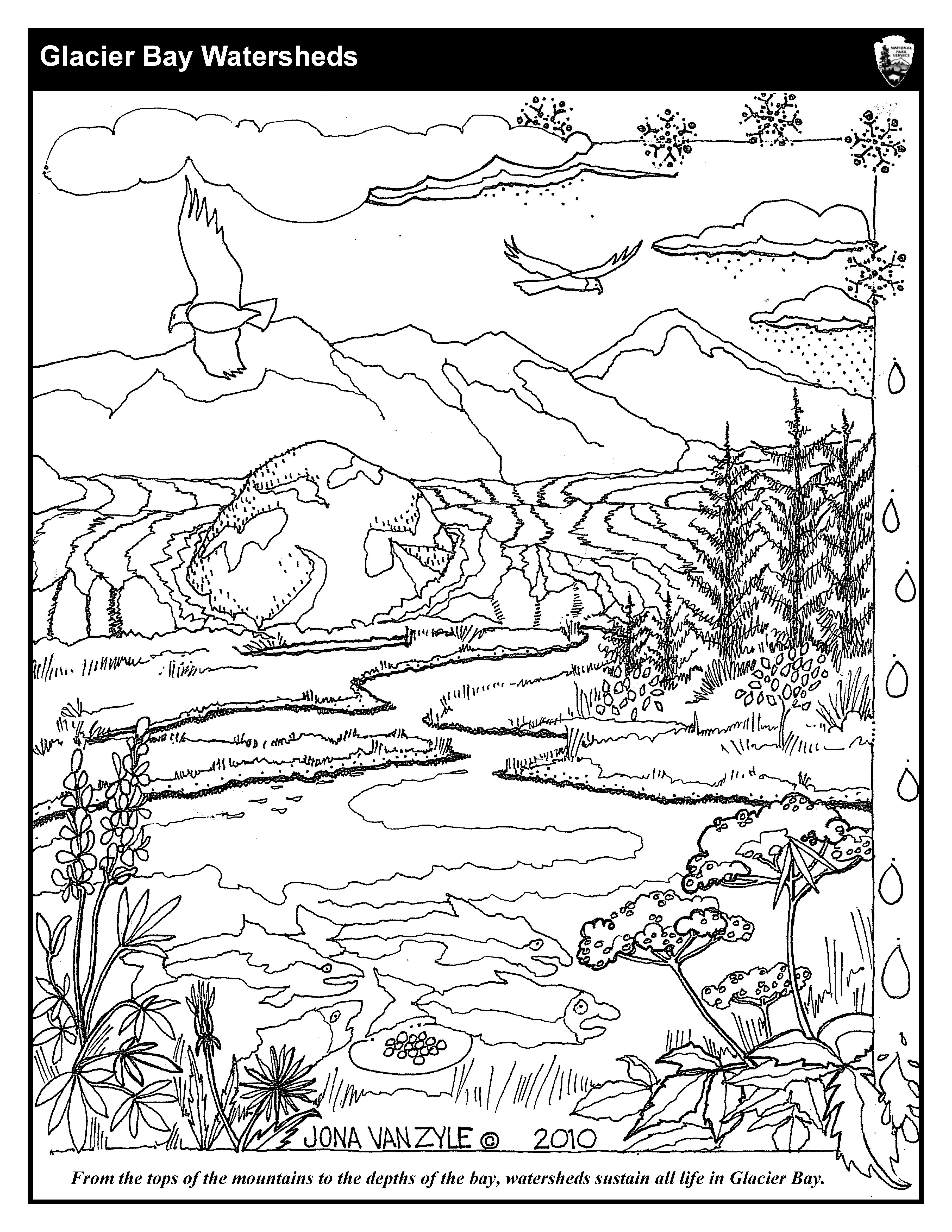 5100x6600 Coloring Sheets