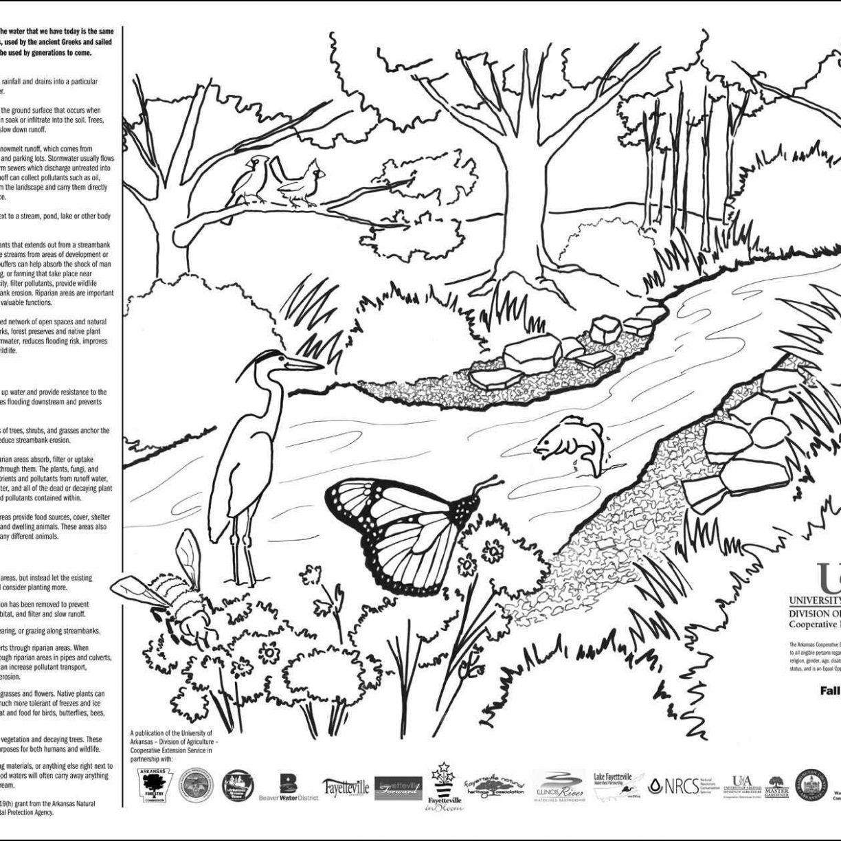 1224x1224 Garden Coloring Pages In Diaet Me Incredible Free Of Gardens