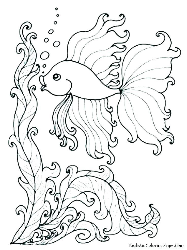 736x981 Ocean Color Pages Ocean Coloring Page Ocean Coloring Page