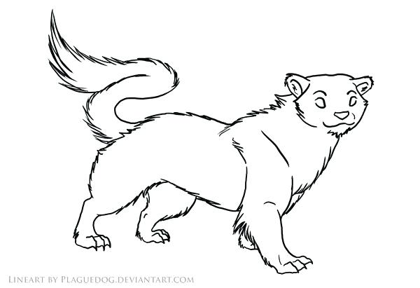 600x411 Weasel Animal Coloring Pages Animal Tracks Coloring Pages Best