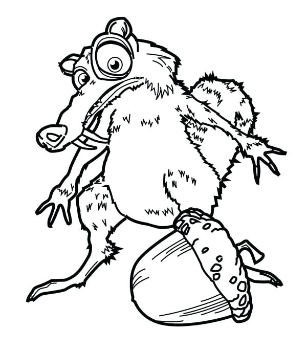 600x686 Weasel Animal Coloring Pages Transasia