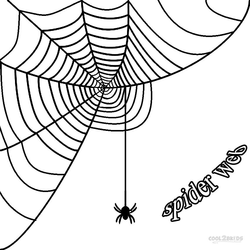850x850 Printable Spider Web Coloring Pages For Kids