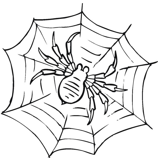 600x600 Spider Web Coloring Page Awesome Spider Web Coloring Page Netart