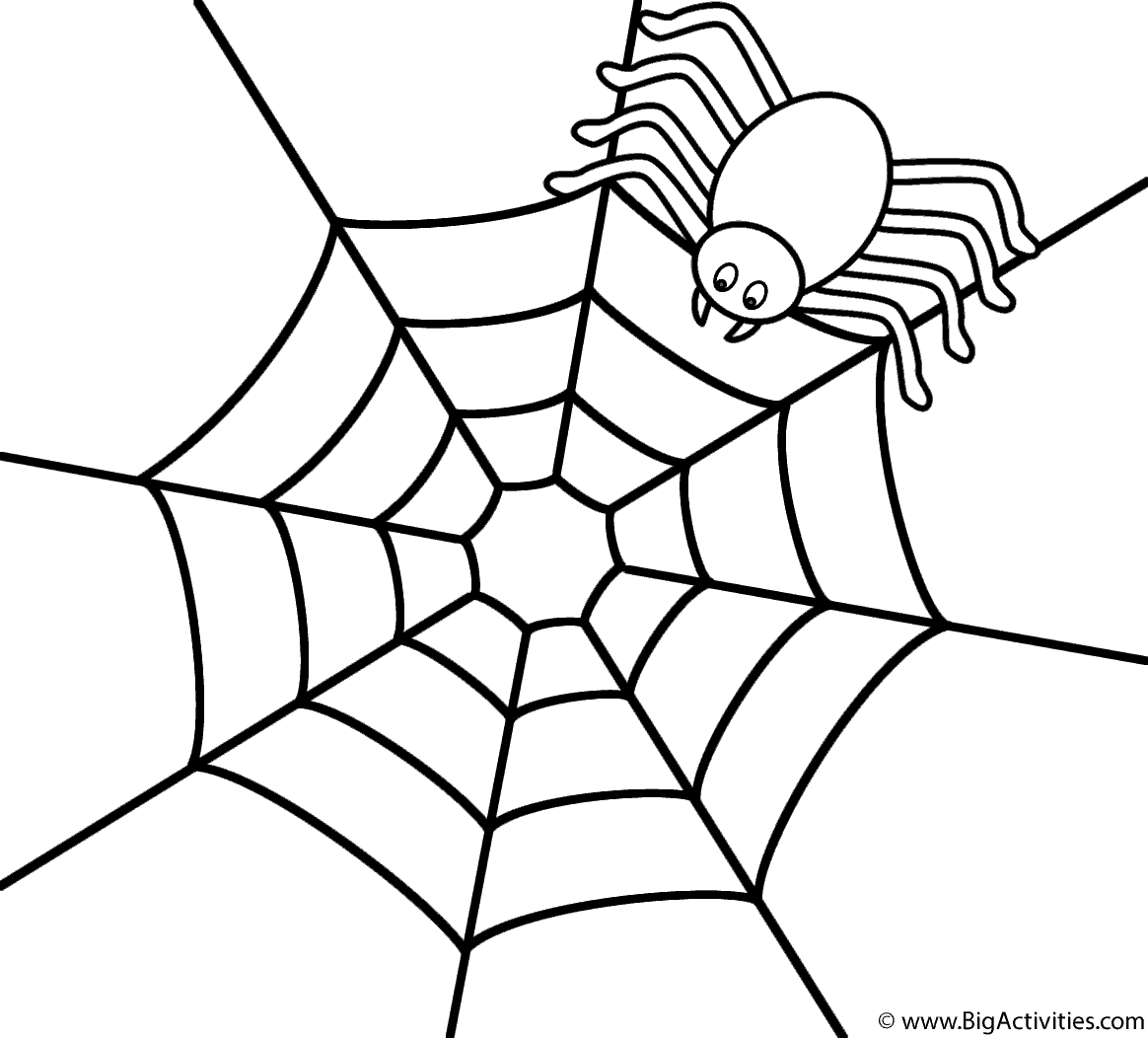 1164x1052 Spider On Top Of Web Coloring Page Insects Spider Coloring Page