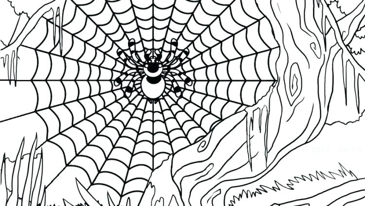 750x425 Funnel Web Spider Coloring Pages Kids Coloring Spider Web Coloring