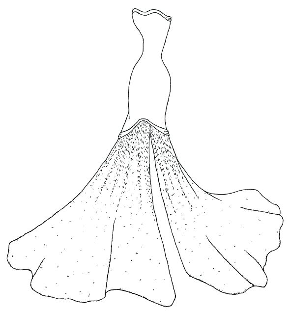 590x637 Dress Coloring Pages Dress Pictures To Color Wedding Dress