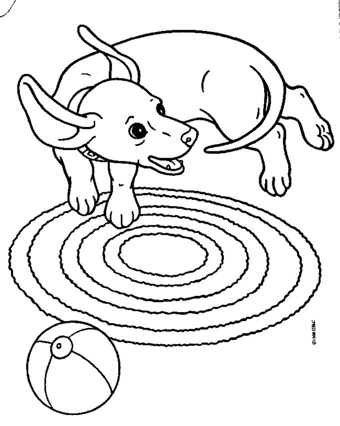 Weenie Dog Coloring Pages