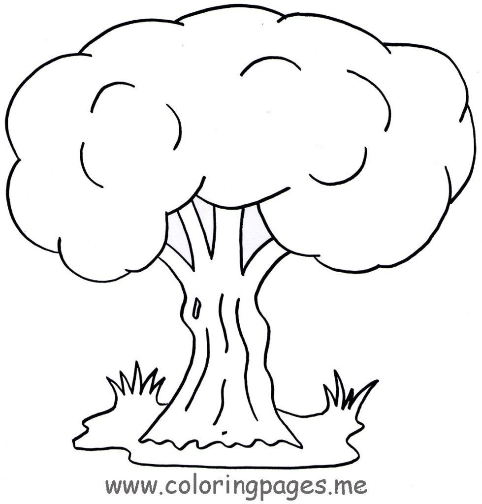 979x1024 Fresh Weeping Willow Tree Coloring Page Free Coloring Pages Download