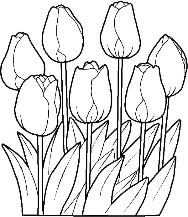 600x693 Spring Coloring Page Kids Drawing Of Springtime Coloring Page