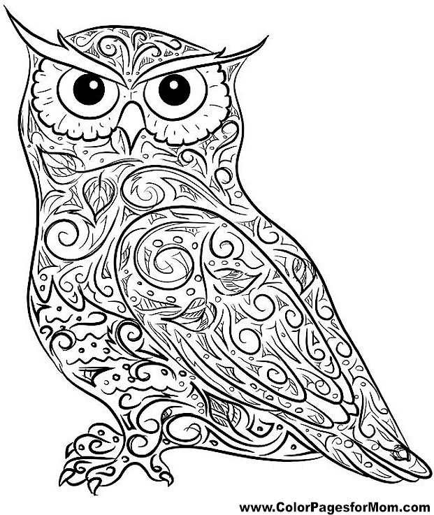 621x737 Free Printable Owl Coloring Pages Adult