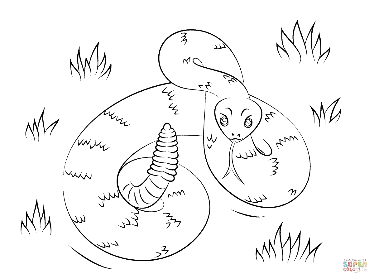 Western Diamondback Rattlesnake Coloring Pages