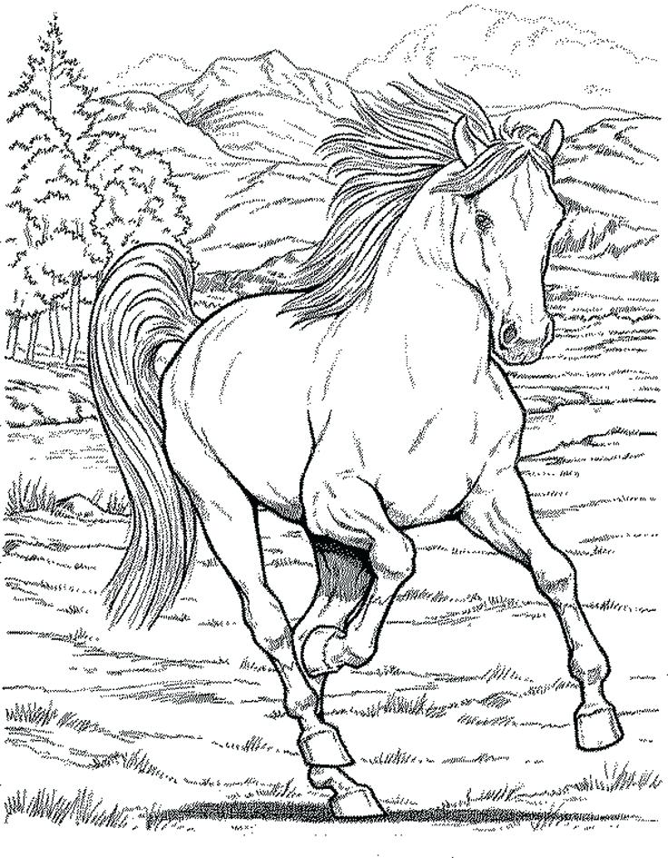 736x945 Awesome Western Coloring Pages And Western Town Coloring Pages