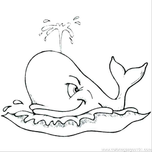 650x650 Whale Shark Coloring Pages