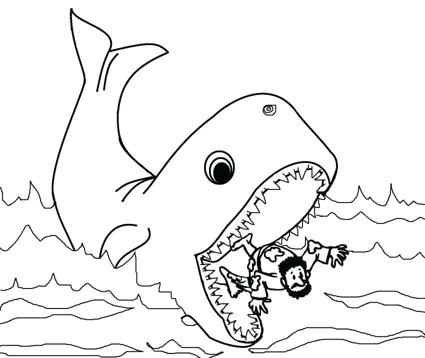 850x716 Couple Of Whales Coloring Pages Killer Whales Coloring Pictures
