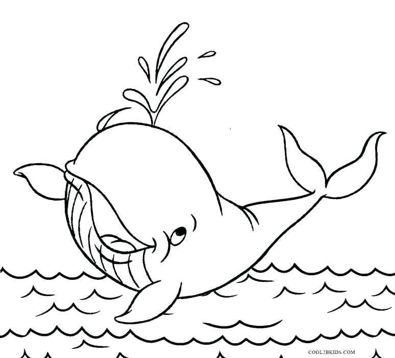 774x700 Whale Coloring Page Amazing Whale Coloring Page For Your Coloring