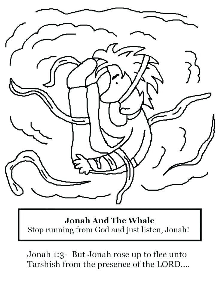 728x942 Whale Colouring Pictures Whales Coloring Pages And The Whale