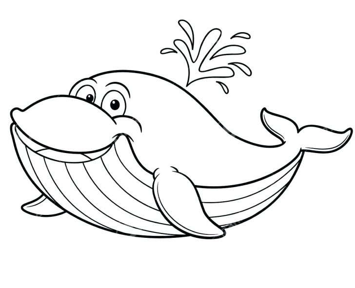 728x591 Awesome Size Of A Blue Whale Coloring Page Pages Flowers