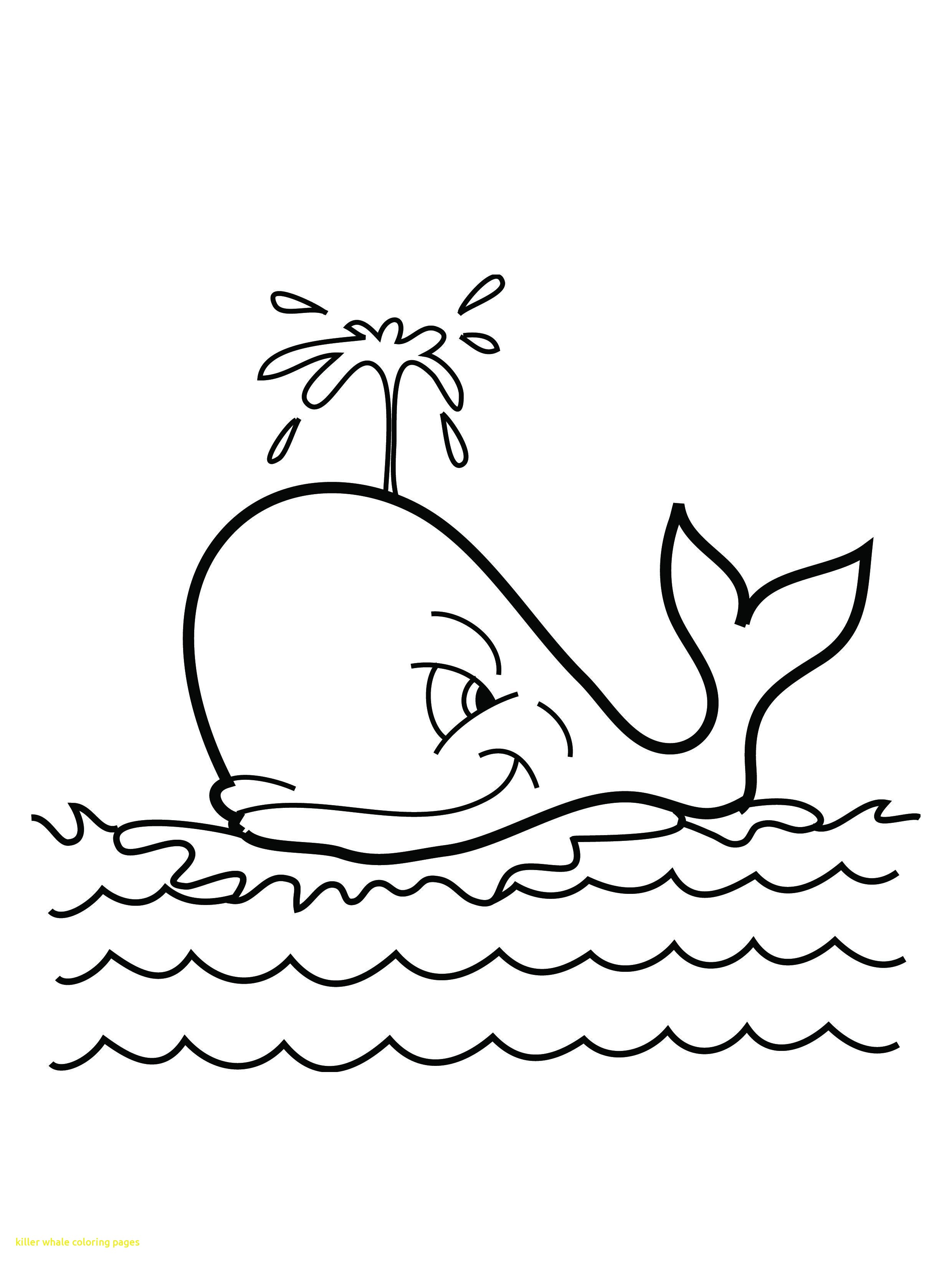 2480x3292 Killer Whale Coloring Pages With Free Printable Whale Coloring