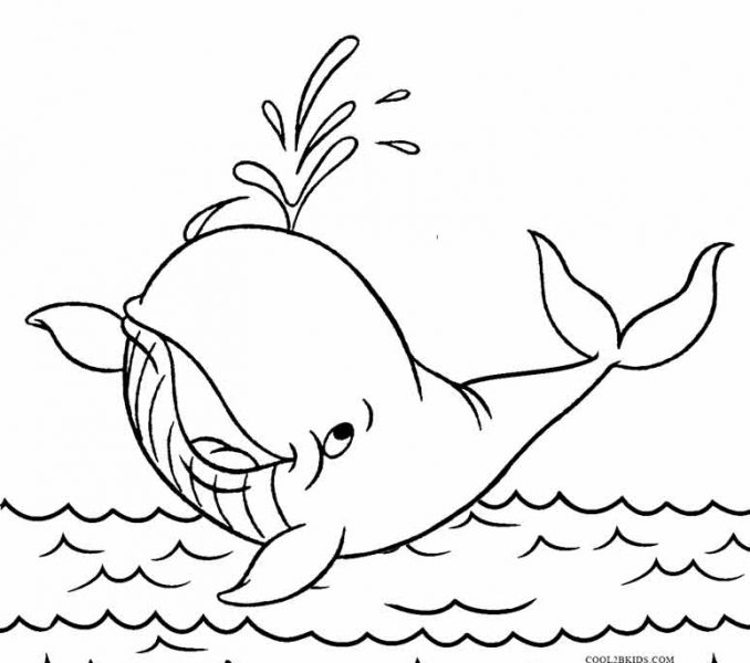 678x600 Whale Coloring Pictures Whale Coloring Pages Printable Whale