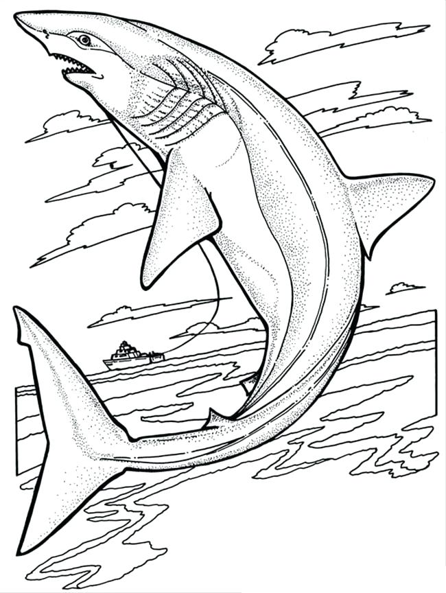 650x864 Shark Coloring Pages Shark Jaws Sketch Coloring Pages Whale Shark