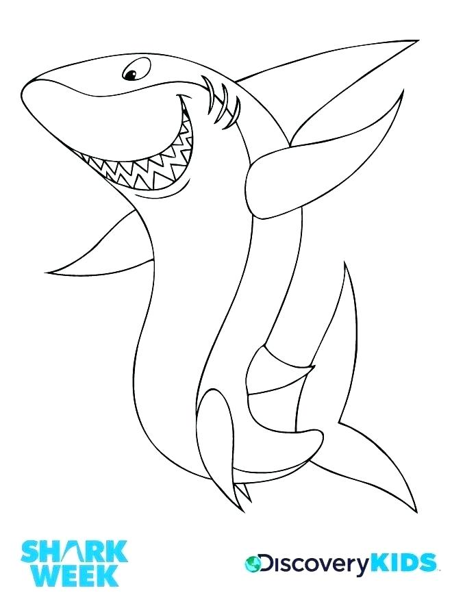 660x885 Whale Shark Coloring Page Whale Shark Coloring Page Coloring Page
