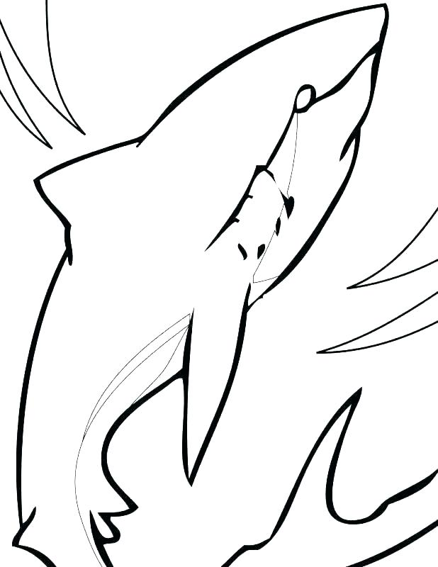 618x800 Whale Shark Coloring Pages