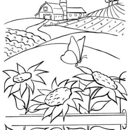 268x268 Corn And Wheat Crops Coloring Pages Farmer Day Coloring