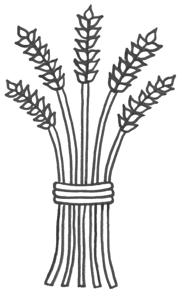 618x992 Best Images On Embroidery, Wheat Drawing