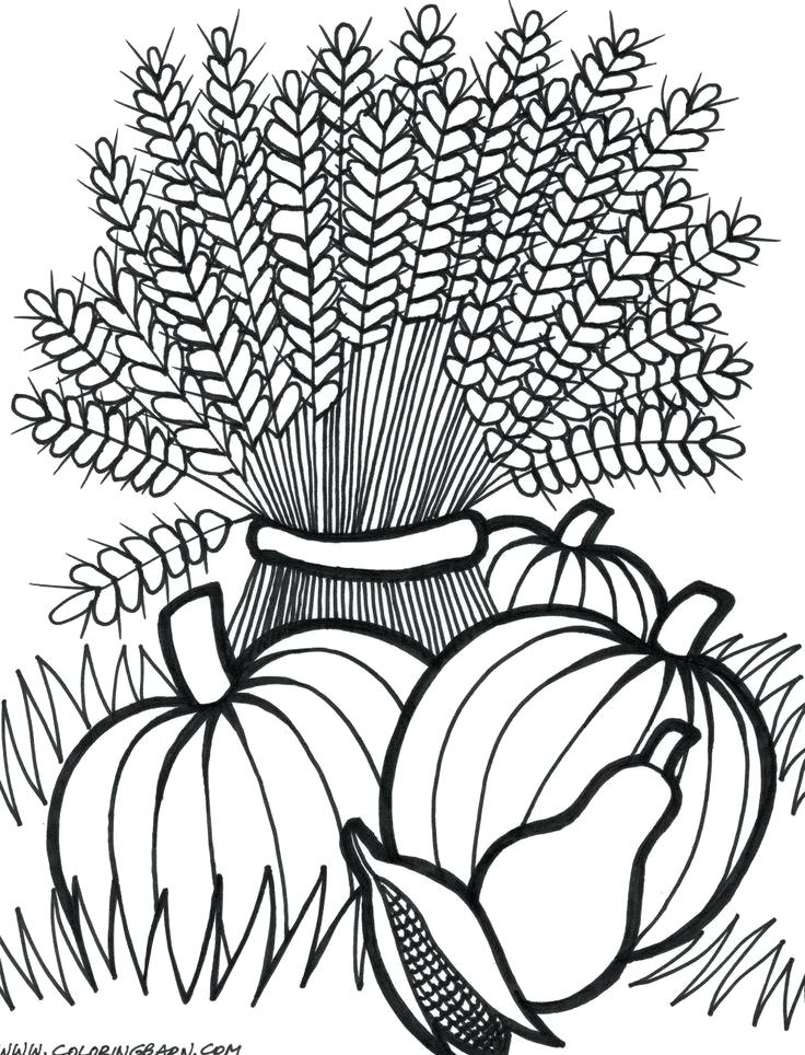 736x964 Thanksgiving Coloring Pages For Adults Thanksgiving Wheat Coloring