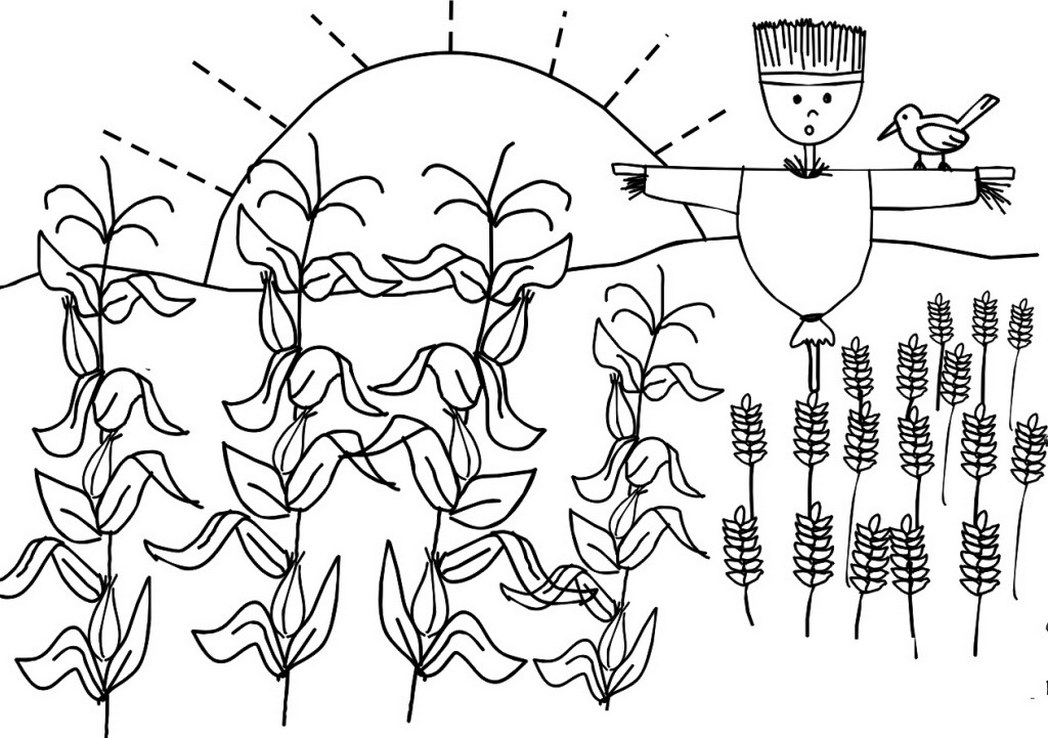 1048x738 Corn And Wheat Crops Coloring Pages Farmer Day Coloring