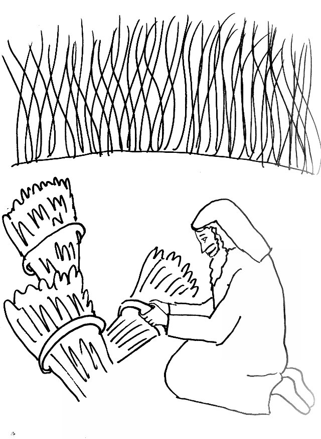 640x873 Bible Story Coloring Page For Parable Of Wheat