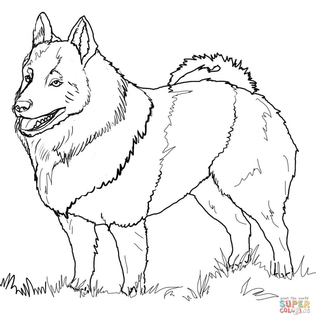 1200x1216 Fashionable Labradoodle Animal Coloring Pages Labrador