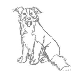 300x300 Border Collie Coloring Book Pages Coloring Pages, Collie Coloring