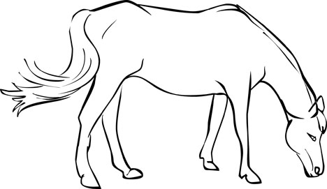468x271 Free Horse Coloring Pages From Mustangs To Lipizzaners