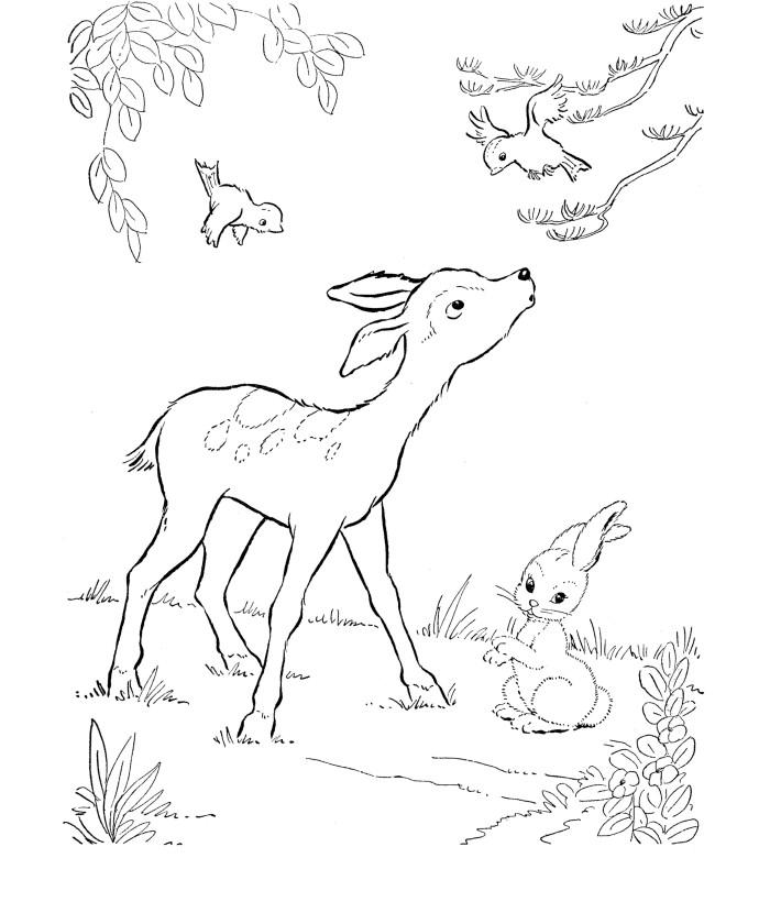 700x820 Deer Templates