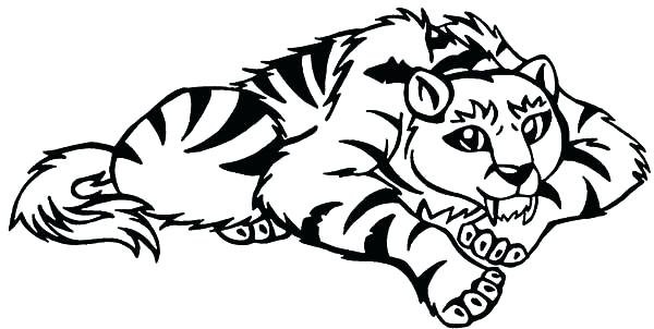 600x302 Tiger Coloring Pages Best Coloring Pages For Kids O The Owl Tiger