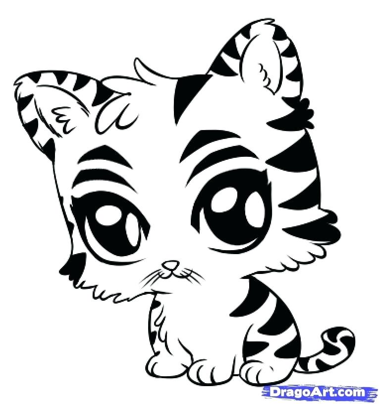 765x814 White Tiger Coloring Pages