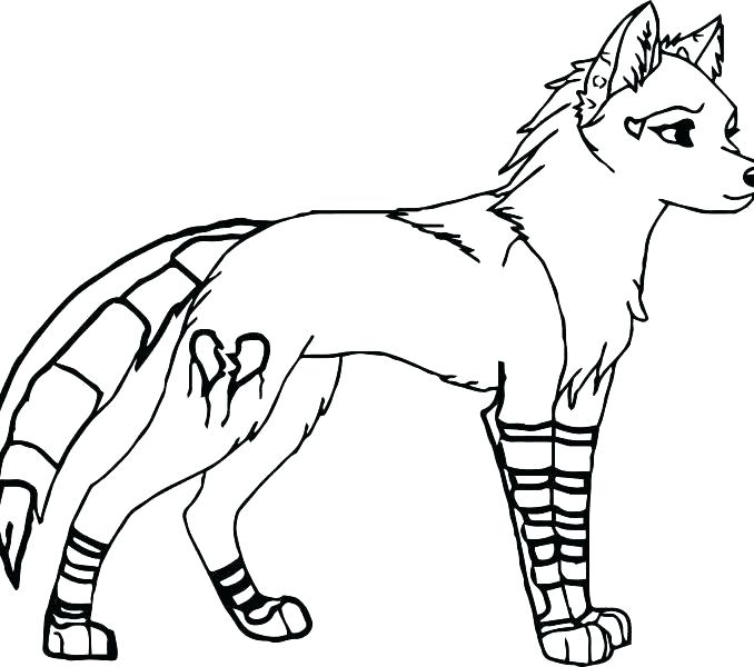 678x600 Coloring Pages Wolves Coloring Pages Wolves Gray Wolf Coloring
