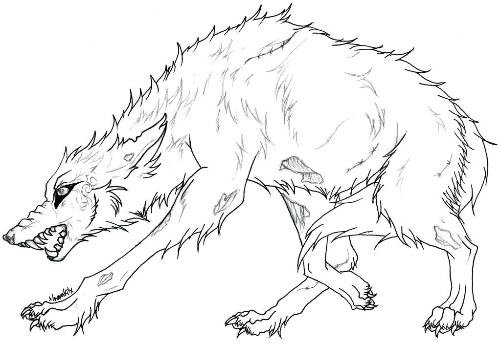 1024x704 Realistic Adult Wolf Coloring Pages Free Printable Amazing Wolf