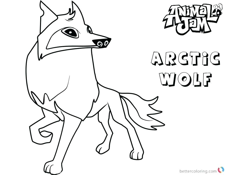 900x700 Arctic Coloring Pages Animal Jam Coloring Pages Arctic Wolf Animal