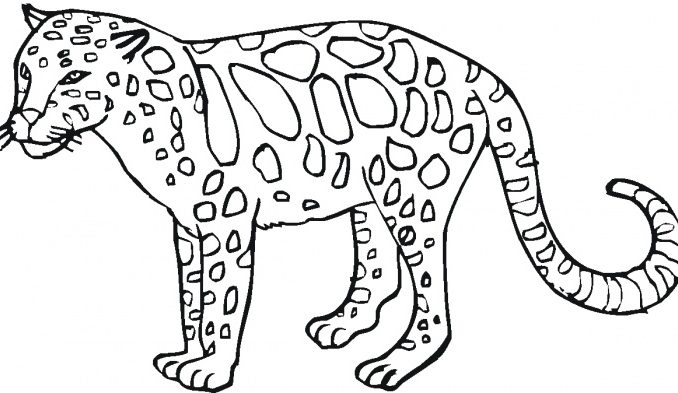 Wild Animals Coloring Pages Printable At Getdrawings Com