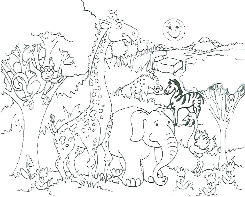 970x780 Wildlife Coloring Pages Printable Animal Coloring Pages For Kids