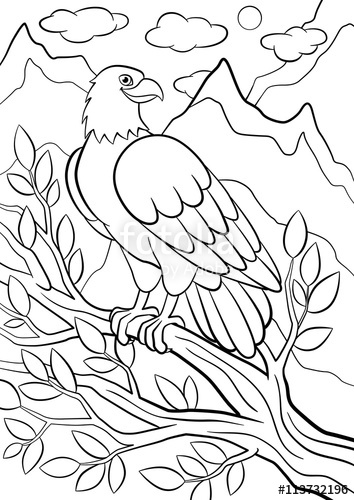 354x500 Coloring Pages Wild Birds Cute Eagle Sits On The Tree Branch