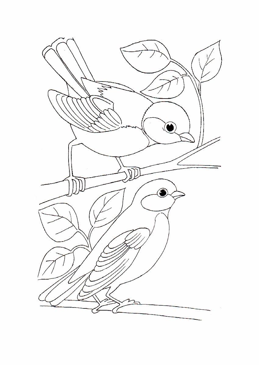 850x1200 Simple Bird Coloring Pages Best Coloring Page Site Mandalas