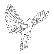 230x230 Top Free Printable Bird Coloring Pages Online