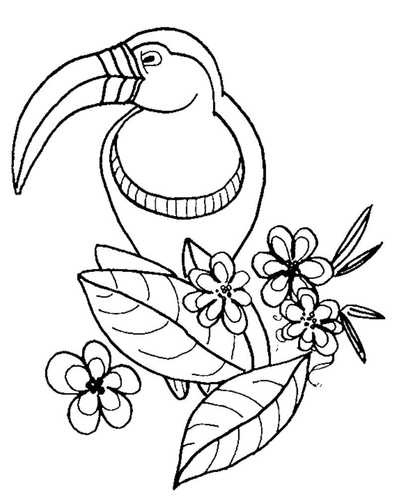 794x1004 Zoo Animals Coloring Pages