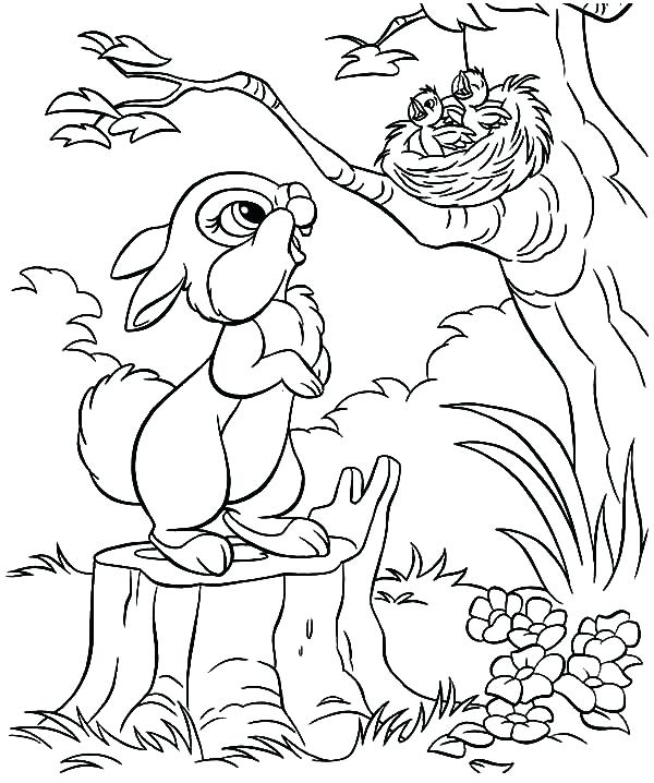 600x718 Baby Bird Coloring Pages Coloring Pages Collection