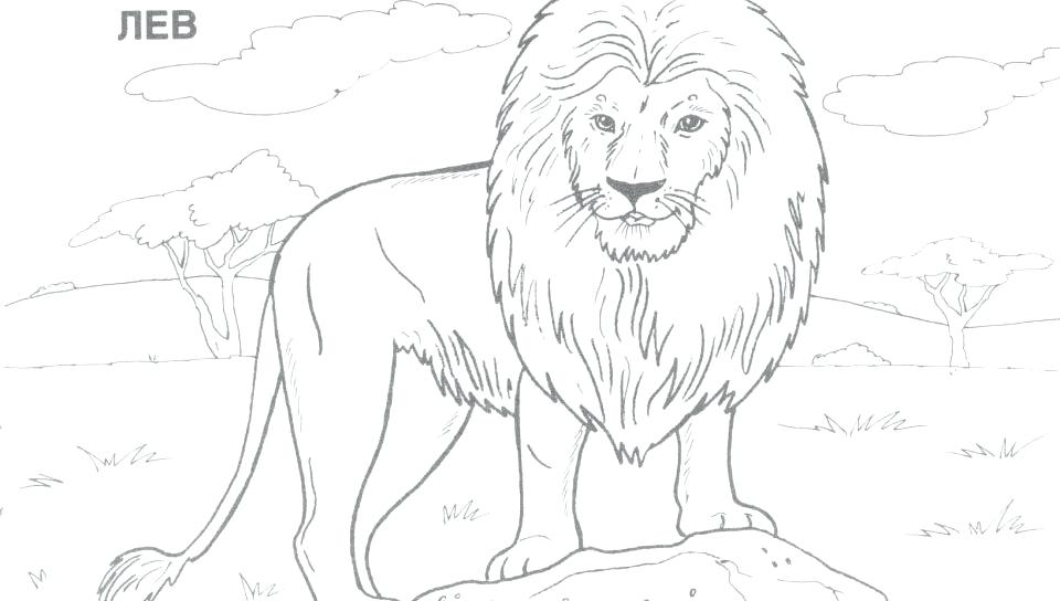 960x544 Wild Animal Coloring Pages Wild Boar Coloring Coloring Page Wild